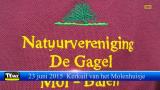 Kerkuil Molenhuisje te Mol - Met dank aan Natuurvereniging De Gagel